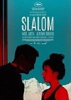 Slalom / Regionální ozvěny Febiofestu 2021